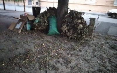 Uklonjena divlja deponija u Čitaoničkoj ulici